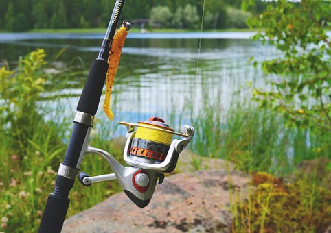 Best Spinning Reels for the Money 2019 | The Top Value