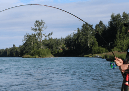 Best Salmon Steelhead Fishing Rods