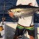 Best Tuna Fishing Reels