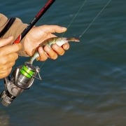 How To Cast A Spinning Rod